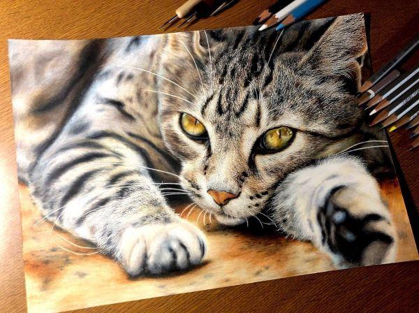 工藤陽輝さんが色鉛筆で描いた作品