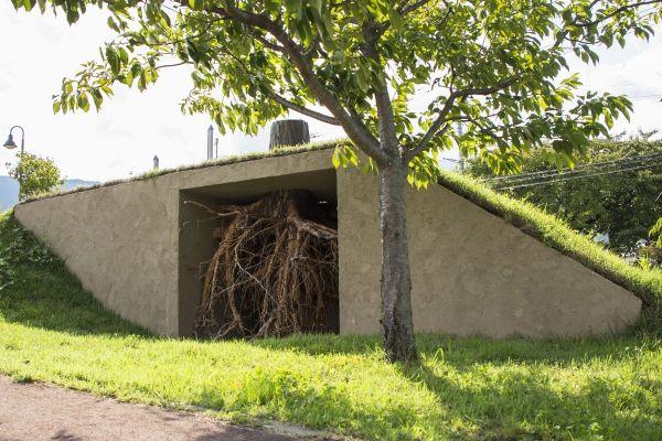 竹腰耕平さんの「韮崎の木」(根っこが見えるようにトリミングしています)=撮影:青柳茂