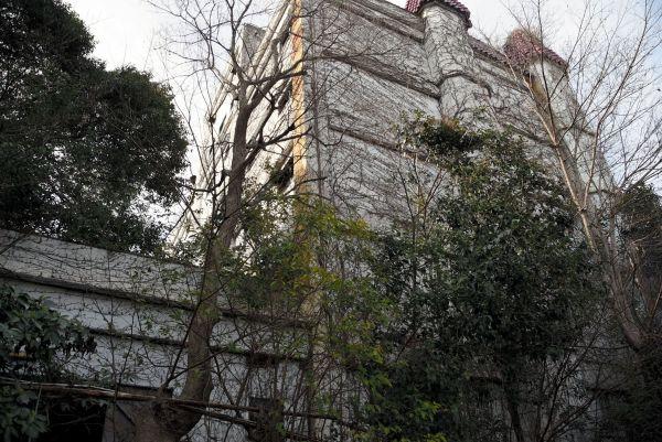 ツタが生い茂り、不気味な雰囲気が漂う=2019年3月19日、水戸市天王町