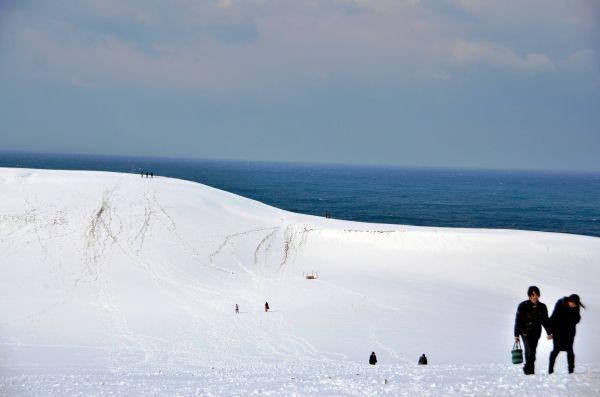 朝からの降雪で真っ白になった鳥取砂丘=2013年12月20日、鳥取市福部町湯山