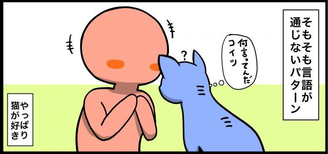 (9)そもそも言語が通じない