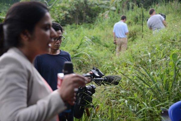洞窟近くのパイナップル畑からリポートするメディア記者
