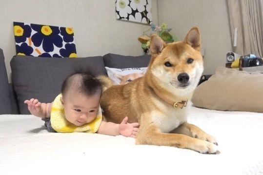 りんご郎と大脇家の長女・来未ちゃん