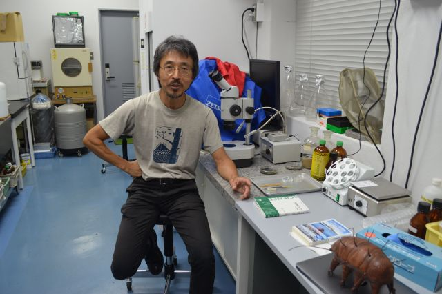 慶應義塾大学の鈴木忠先生。手前には知人からもらったという、革製のクマムシのぬいぐるみが見守る
