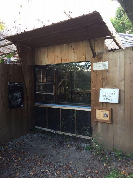 マヌルネコの展示施設
