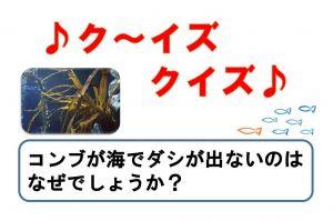 昆布のダシ、なぜ海中で出ない? おたる水族館のクイズ展示が面白い