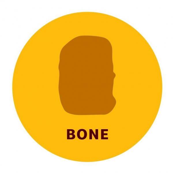 4種類の形のうちのひとつ「ボーン」