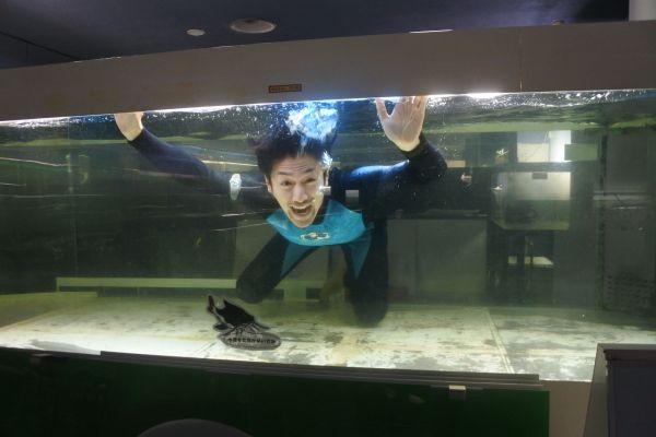 すべての生き物たちの譲渡を終えて、空になった水槽にもぐった浅田渉さん