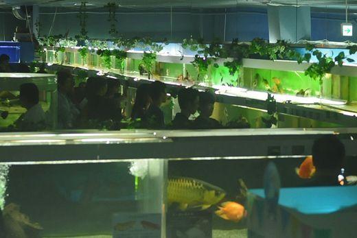 閉館が近づいた昨年9月、お客さんであふれる東京タワー水族館