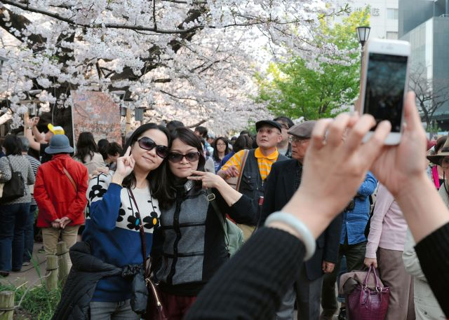 桜を背景に記念撮影する中国人観光客=2015年3月、東京都千代田区、北村玲奈撮影