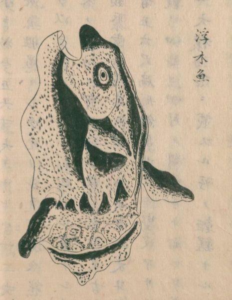 古文献で「マンボウ」として描かれていた絵。阿部照任・松井重康1758e『採薬使記(序文不詳)』巻中(写本作成年不詳)