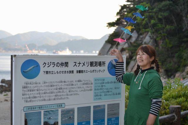 十数年間、関門海峡に生息するスナメリの観察を続けた上崎美代子さん=2014年5月6日、山口県下関市、竹下美由姫さん提供