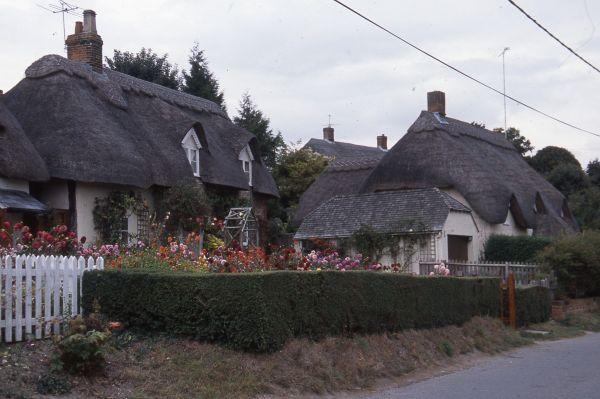 英国では小麦わらで葺いた屋根が多い