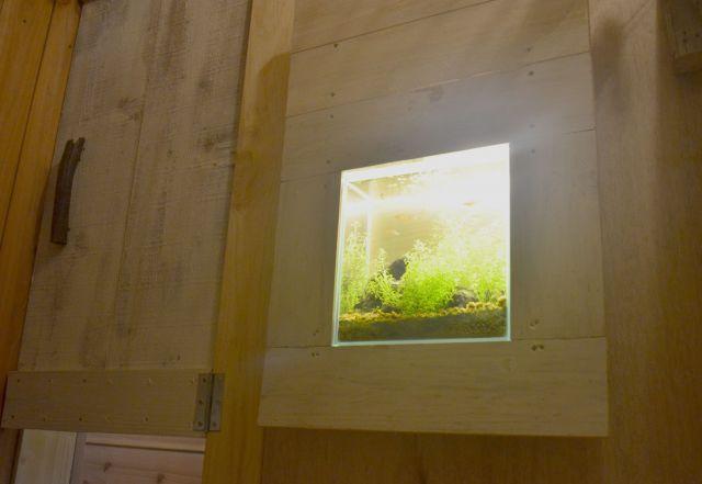 個室には水槽があるスペースも。小さな熱帯魚をみながらくつろぐことができる。
