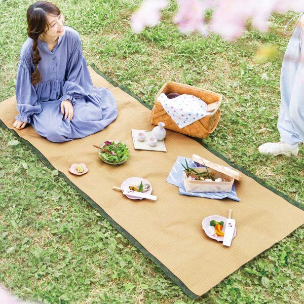 話題になっている畳柄のレジャーシート「日本の風景を変える 畳シート」