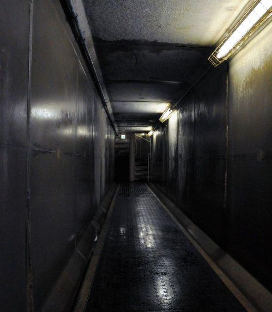 通称「荒木トンネル」=2019年8月、東京都新宿区、榊原謙撮影
