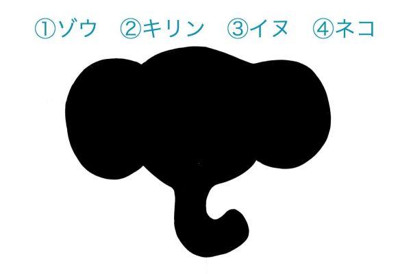 (1)ゾウ (2)キリン (3)イヌ (4)ネコ