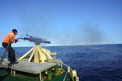 捕鯨砲を撃つ瞬間=2019年7月28日、スバールバル諸島沖