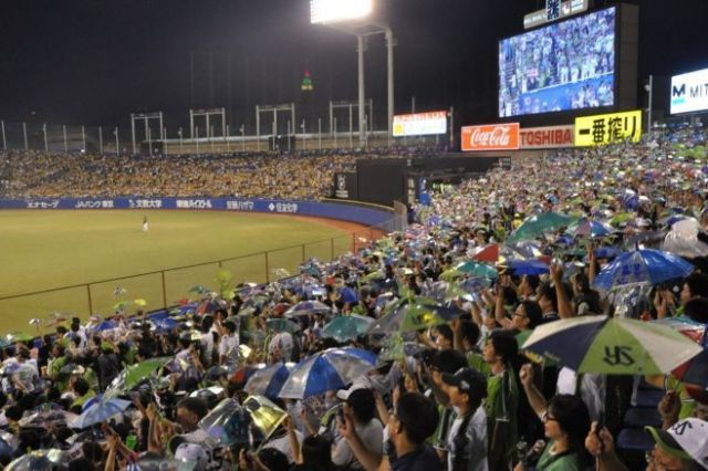 神宮球場の外野席で、傘を振って応援をするヤクルトファン=東京都新宿区、榊原謙撮影