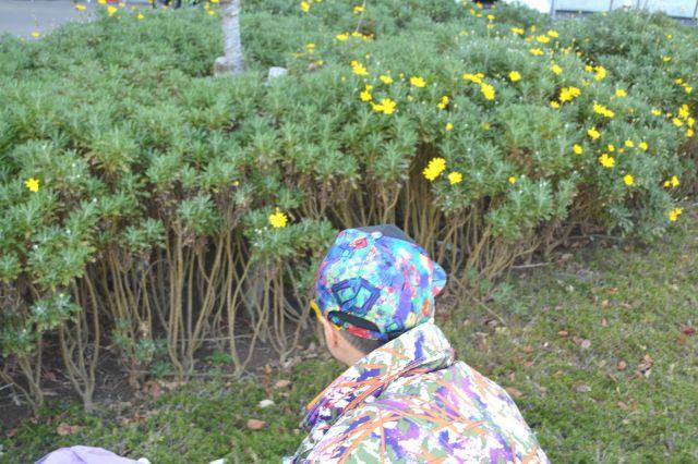 確かに花が咲いていた