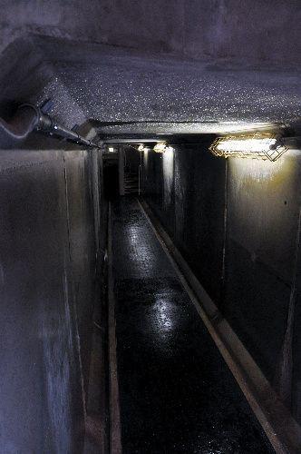 「荒木トンネル」の内部。約15メートルの直線の地下通路になっている=東京都新宿区、榊原謙撮影