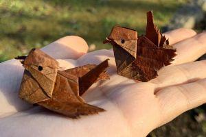 落ち葉で折り紙、スズメが完成! 特徴を捉...