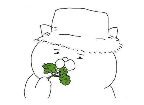 漫画「パセリ」