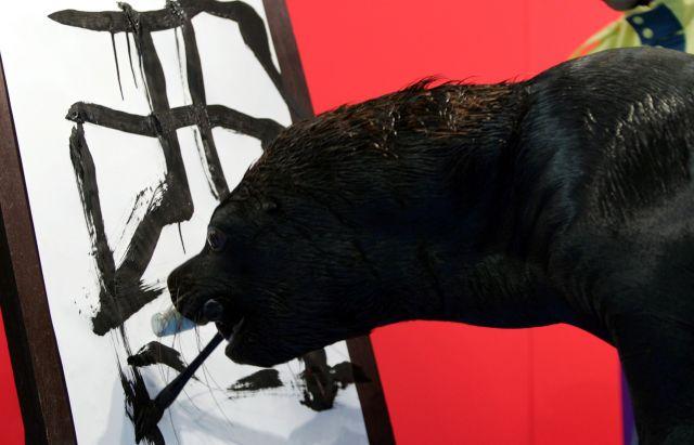 酉年の漢字を書くアシカ=八景島水族館、横浜、2005年1月1日