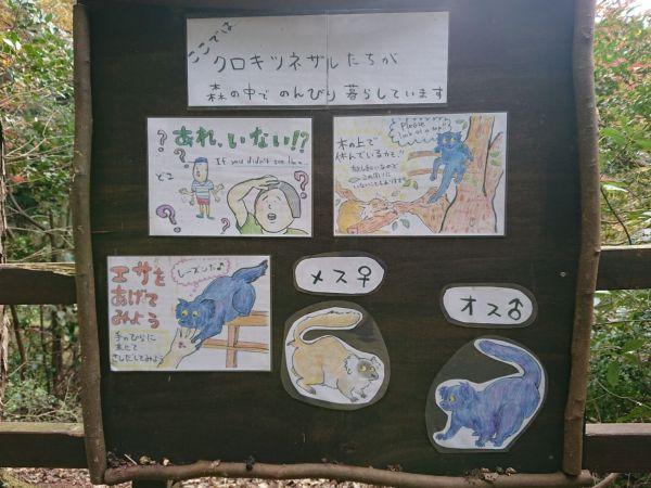 土田さんが描いたイラストの数々