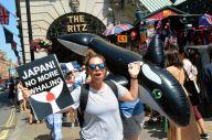 捕鯨批判は「人種差別」か? 日本が反感、招きやすくなった理由