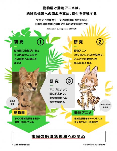 東京大大学院・深野祐也助教らが発表した研究の概略図。動物園・けもフレのアニメ第一作が、絶滅危惧種への関心を高める過程について明らかにしている