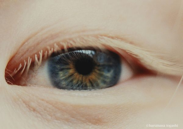 神原さんの瞳を写した作品「星を見ている」