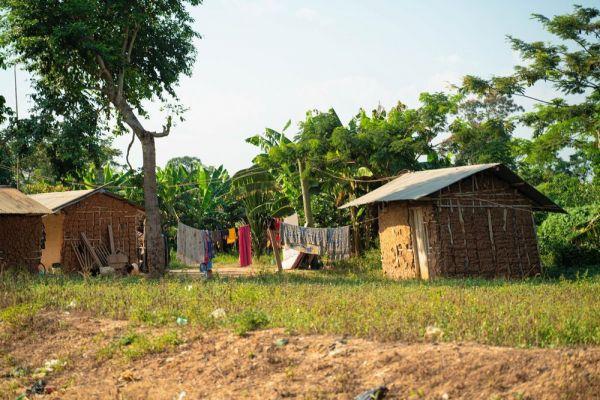 カカオ農家の村