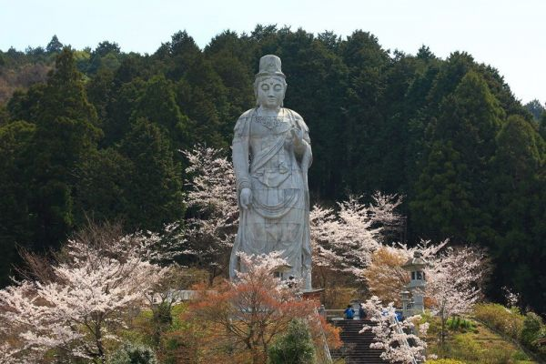 奈良県高取町の壺阪寺にそびえる「天竺渡来大観音石像」(20メートル)。背景の新緑の中から浮かび上がるかのごとく現れる