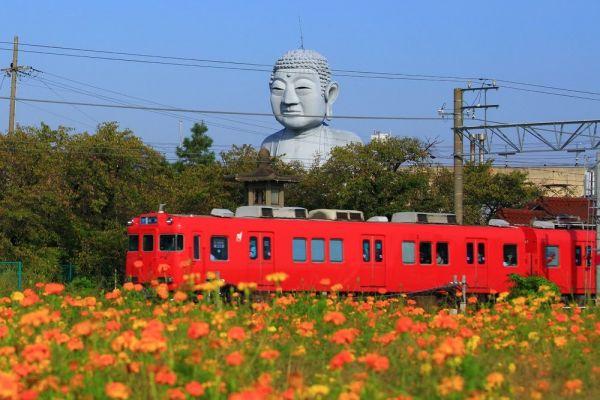 のどかな田園風景を突き破るような姿の「布袋大仏」(愛知県江南市・18メートル)。個人が造ったもので、鍼灸院の敷地内に建つ