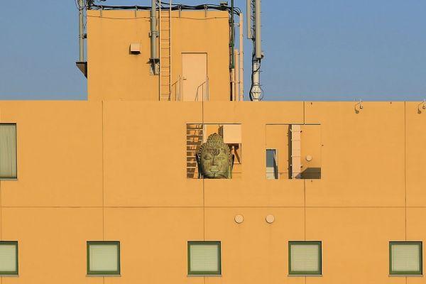 大阪市の雑居ビル屋上に残された「安治川の仏頭」(2メートル)。かつてテナントとして入居していた家具店が、宣伝用に設置した。謎めいた構図に、心奪われる人が後を絶たないという