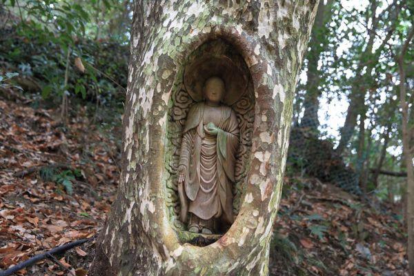 愛媛県四国中央市の「生木地蔵」は、その名の通り、木に直接彫り込まれている。生命感あふれる姿は、一般的な仏像とは違った印象を見る者に残す