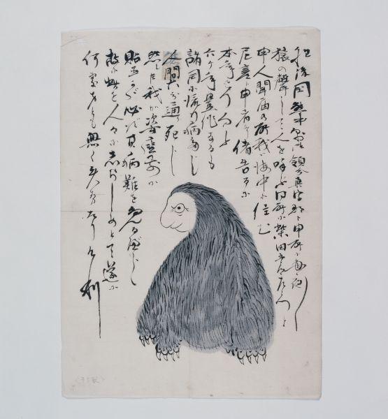 猿のような姿をしている予言獣「尼彦(アマビコ)」。「アマビエ」は「アマビコ」を書き違えたのではという説を妖怪を研究する湯本豪一さんは唱える。