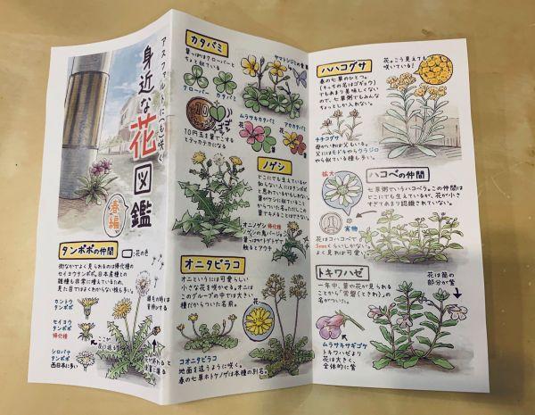 花図鑑はネットプリントでも印刷できる(5月9日まで)