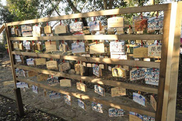 淡島神社に奉納されている作品のキャラクターが彩られた「痛絵馬」の数々