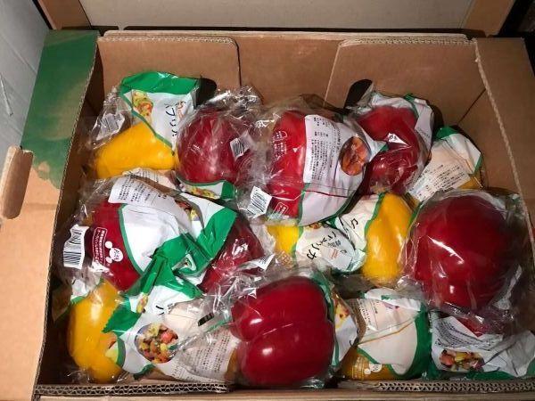 送られた野菜