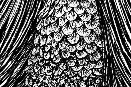 ホラー漫画家の伊藤潤二さんがツイッターに投稿した「アマビエ」のグロテスクな皮膚。「私はへそ曲がりなので、逆に愛嬌のないものを描こうと思いました」