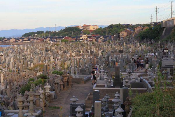 約2万基の墓が所狭しと並ぶ、新潟県琴浦町にある花見潟墓地の様子。日本海と住宅街の間に広がり、まるで「墓の町」と錯覚しそうになるほどの広大さを誇る。