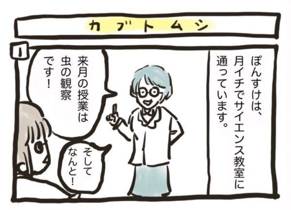 ひとりさんの漫画「ぽんすけ成長日記 カブトムシとの夏」より