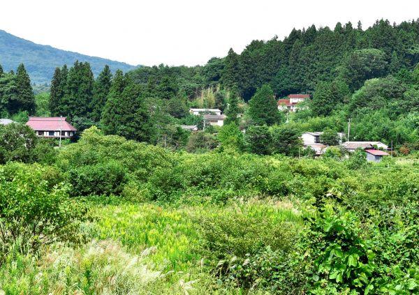 国道114号からのぞむ旧津島村の集落。「DASH村」としても知られる。帰還困難区域のため、いまも立ち入りが制限されている=2017年9月20日、福島県浪江町、内山修撮影