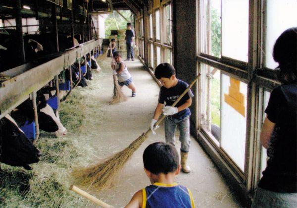 津島の牛舎で掃除を手伝う長男(中央奥)(2007年、門馬和枝さん提供)