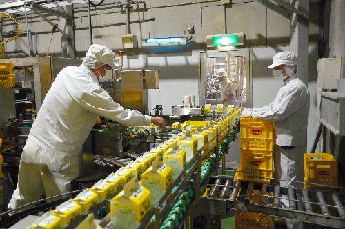 乳製品は原材料が同じでも製造ラインのパイプの圧力や温度によって味が異なり、「レモン牛乳」の再現にも当初は苦労したという=栃木市大平町