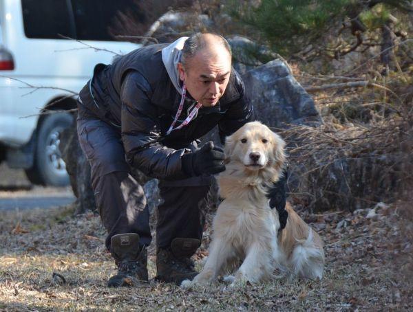 近くの山林でゆきに負傷者発見の訓練をする佐々木光義さん