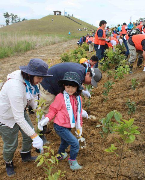 岩沼市が海岸沿いに築いてきた「千年希望の丘」が、同市新浜地区と藤曽根地区にできた。丘を結ぶ園路で植樹祭が開かれた=2017年5月27日