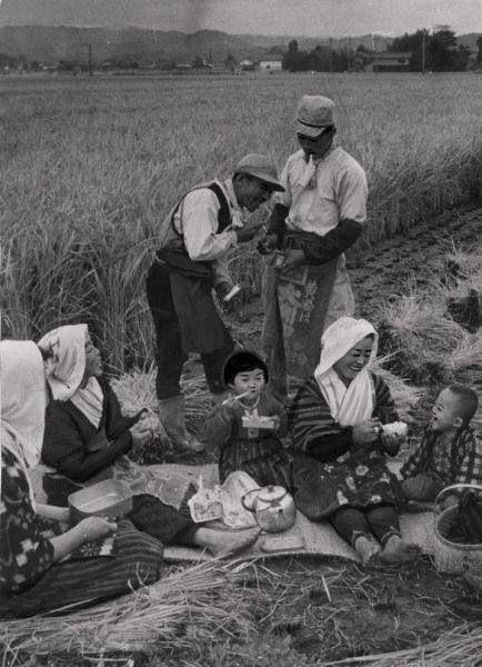 1956年11月、稲刈りの合間に野良で食事をする人たち=滋賀県